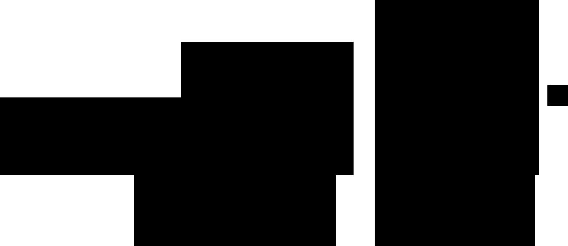 BWS Logo Standard rgb sw